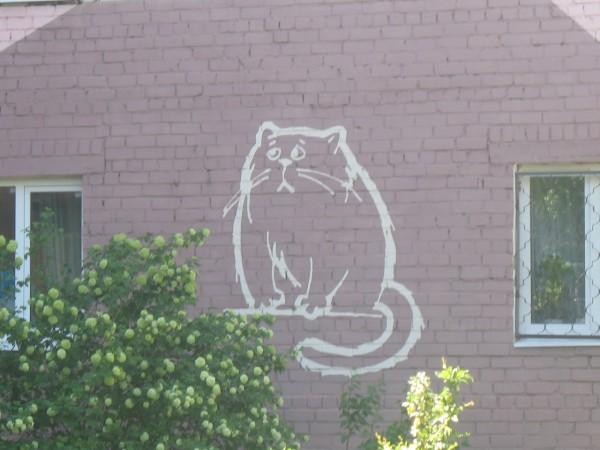 Кот на стене