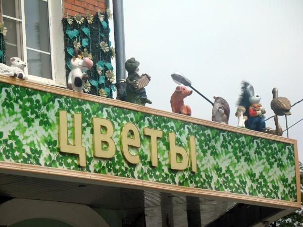 Цветочный дом Метила в Йошкар-Оле