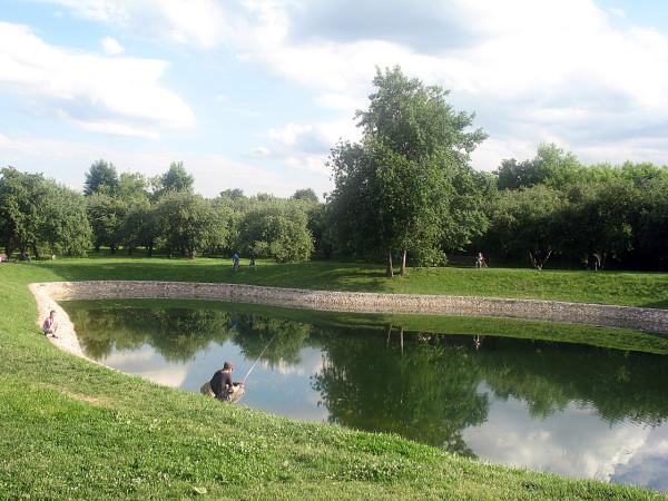 Пруд в пейзажном парке в Коломенском