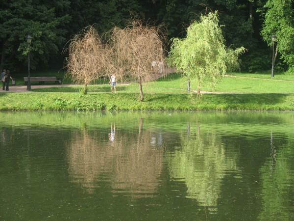 Верхний Царицынский пруд