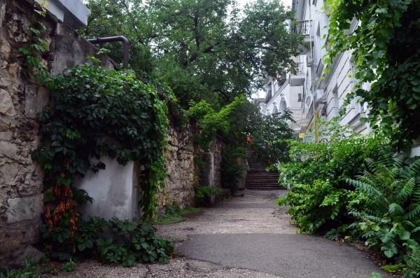 Зеленый двор Севастополя