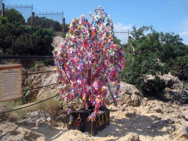 Дерево желаний в Ласточкином гнезде