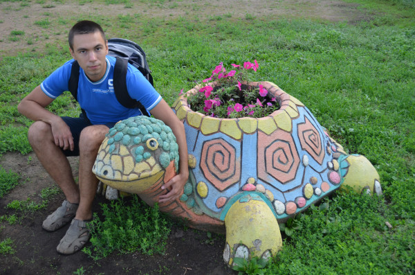 Клумба-черепаха