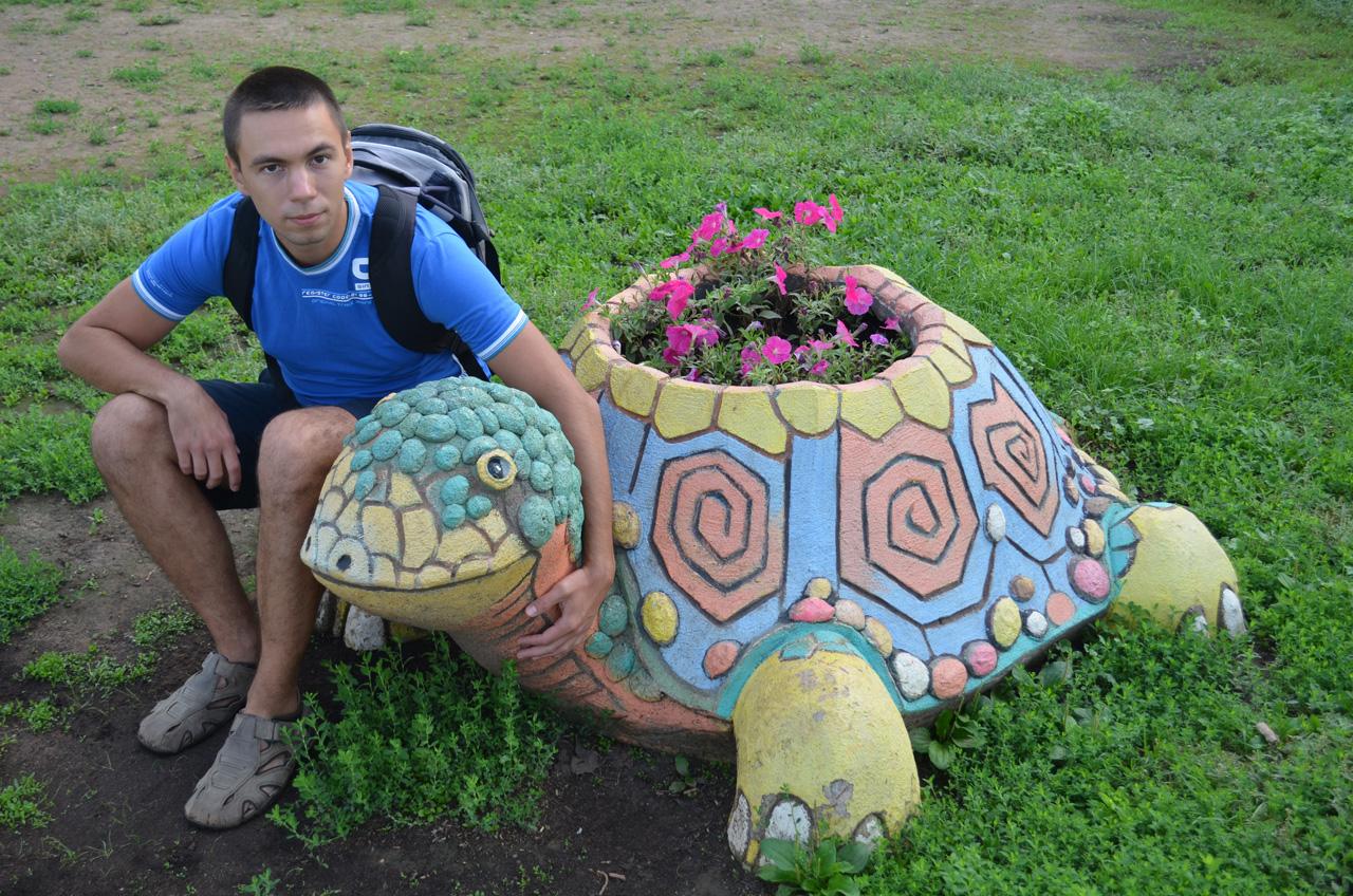 Как сделать черепаху своими руками для сада из цемента 53