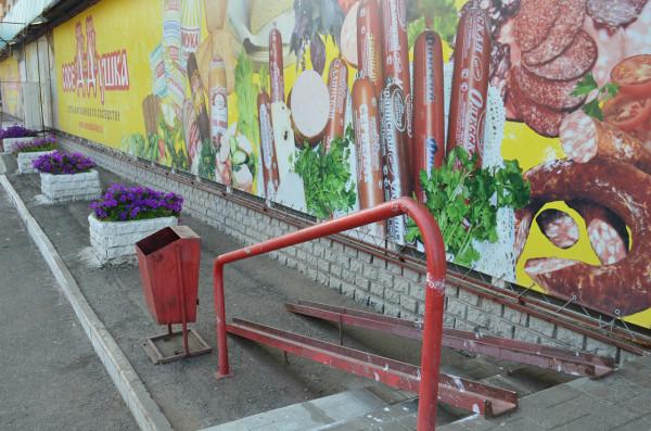 Дружественная инвалидам городская среда в Оренбурге