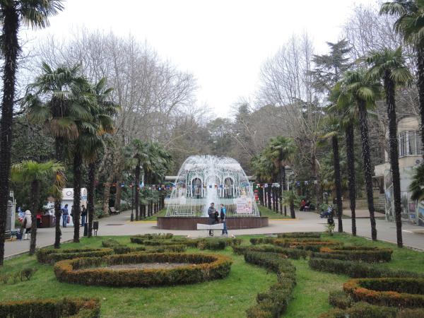Экзотические растения в парке Ривьера в Сочи