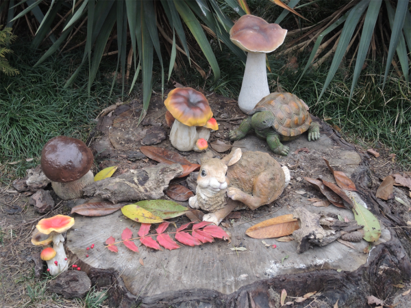 Ривьерские грибы, зайцы и черепахи