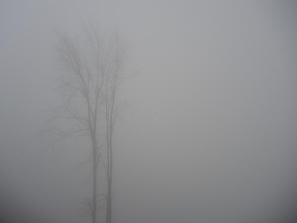Экстрим-парк Роза Хутор в тумане