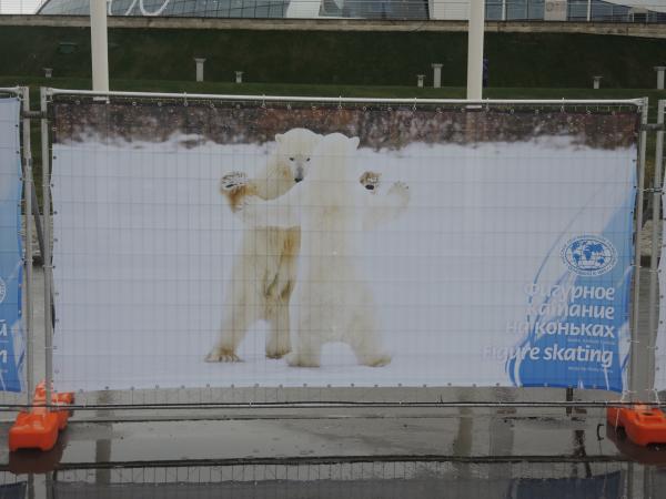 9. Фигурное катание медведей