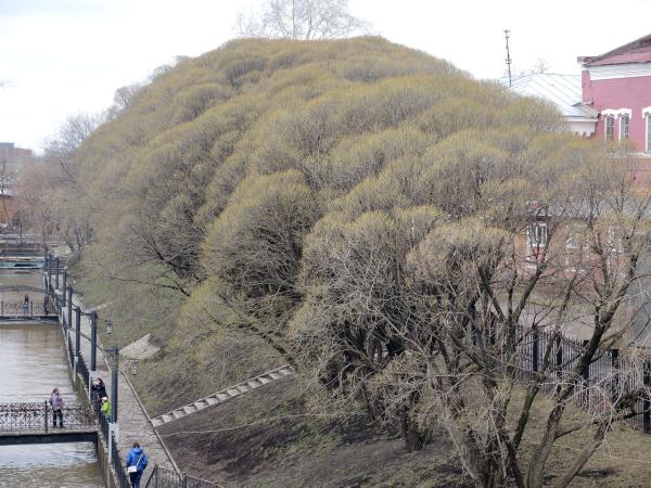 Сквер им. Свердлова рядом с Мотовилихинским прудом в Перми