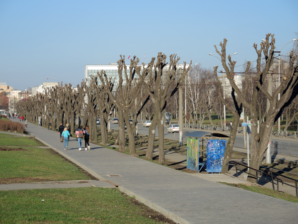 Широкие пермские тротуары