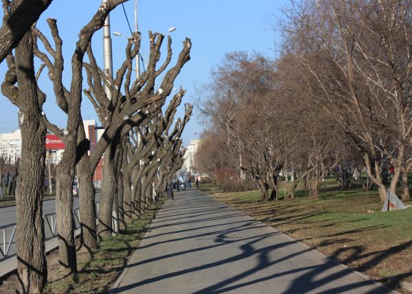 Широкие пермские бульвары