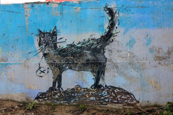 Граффити  кот - стрит-арт в Перми