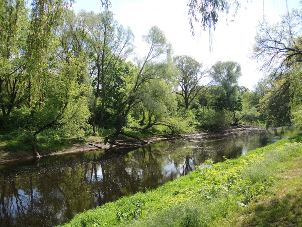 Река Муховец рядом с Брестской крепостью