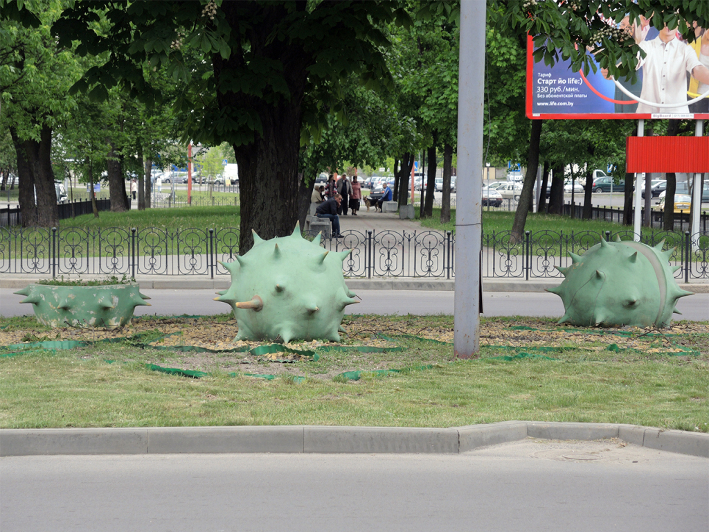 Гигантские каштаны в Бресте